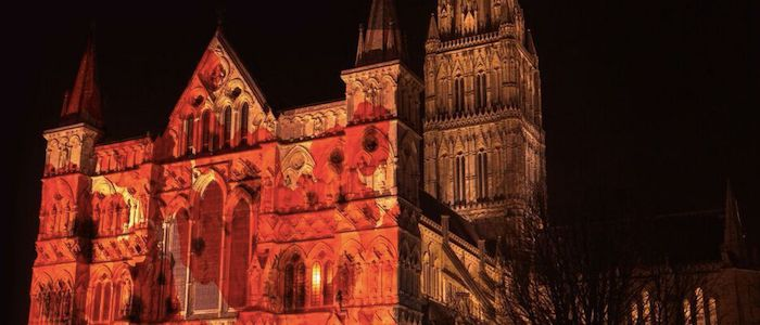 Salisbury Cathedral Armistice Falling Poppies