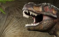 image from Dinosaurs are Coming