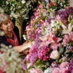 Chichester Flower Festival 2020 Online 2