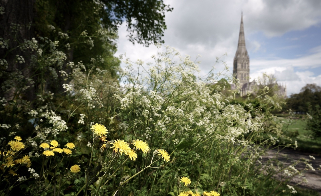 Gold Eco-Church Award for Salisbury Cathedral