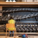 Dippy on Tour - Photos at Norwich Cathedral Natural History Museum